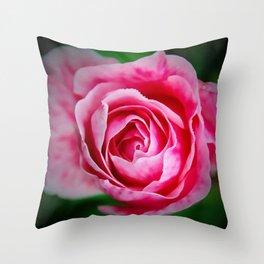 Pink Rose Punch Throw Pillow
