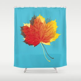Autumn leaves red yellow on blue Shower Curtain