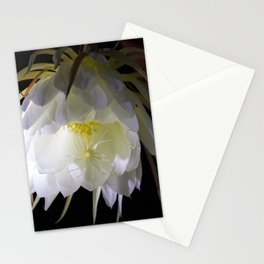 Night Blooming Cereus Stationery Cards