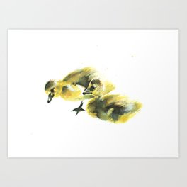 Canadian Goslings Art Print