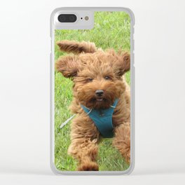 Luna the Labradoodle Clear iPhone Case
