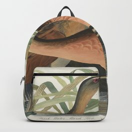 Fresh Water Marsh Hen from Birds of America (1827) by John James Audubon etched by William Home Liza Backpack