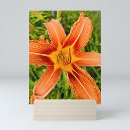Sunny Day Lily by Dana Tinnell Twilight Paintings Mini Art Print