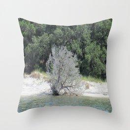 The Skeleton Tree on the Beach Throw Pillow