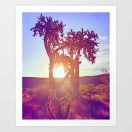 Cactus Glow Art Print