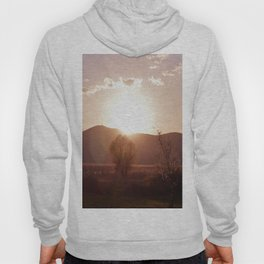 sunset in the meadow Hoody