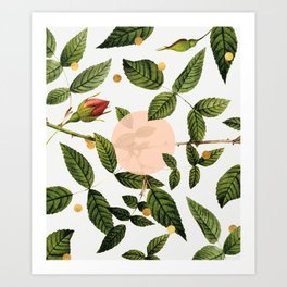 Leaves + Dots Art Print