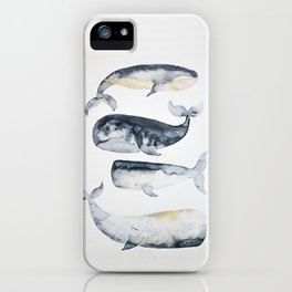 Whale 1 iPhone Case