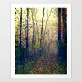 Wandering in a Foggy Woodland Art Print