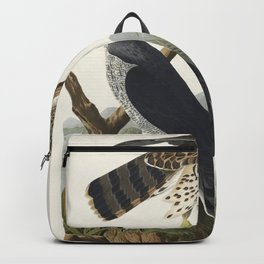Goshawk and Stanley Hawk from Birds of America (1827) by John James Audubon etched by William Home L Backpack