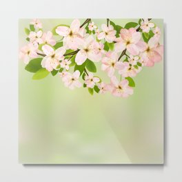 Cherry Blossoms on Green 2 Metal Print