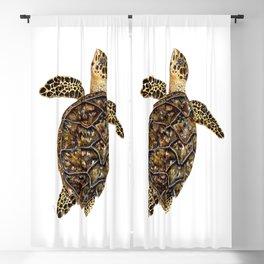 Hawksbill sea turtle (Eretmochelys imbricata) Blackout Curtain