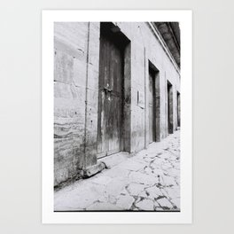 old doors Art Print