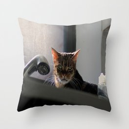 Kitty in the Sink Throw Pillow