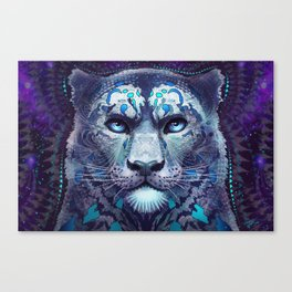 Snow Leopard Late Night Canvas Print