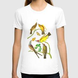 Arkansaw Flycatcher, Swallow-Tailed Flycatcher, Says Flycatcher John James Audubon Birds T-shirt