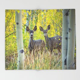 Double Take - Pair of Young Mule Deer Hiding in Autumn Aspens Throw Blanket