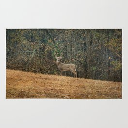 Buck At Pinson Mounds Rug