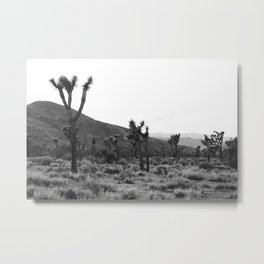 Joshua Tree at Dusk Metal Print