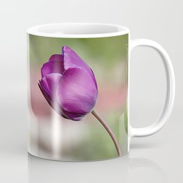 Not afraid to be alone, wild purple tulip flower all alone in the garden Coffee Mug