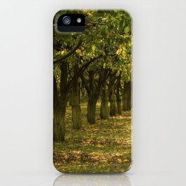 Hazelnuts in Oregon iPhone Case