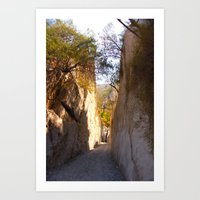 mexican Art Prints featuring Mexican desert by lennyfdzz