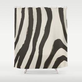 Painted Zebra Shower Curtain