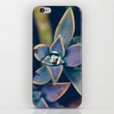 Gem iPhone & iPod Skin