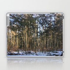 Winter at Home Laptop & iPad Skin