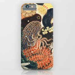 Barrier Reef Trepang or Bche-de-Mer from The Great Barrier Reef of Australia (1893) by William Saville-Kent (1845-1908) iPhone Case