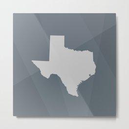 Texas State Metal Print