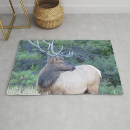 Watercolor Elk Bull 60, Estes Park, Colorado, King of the Rut Rug
