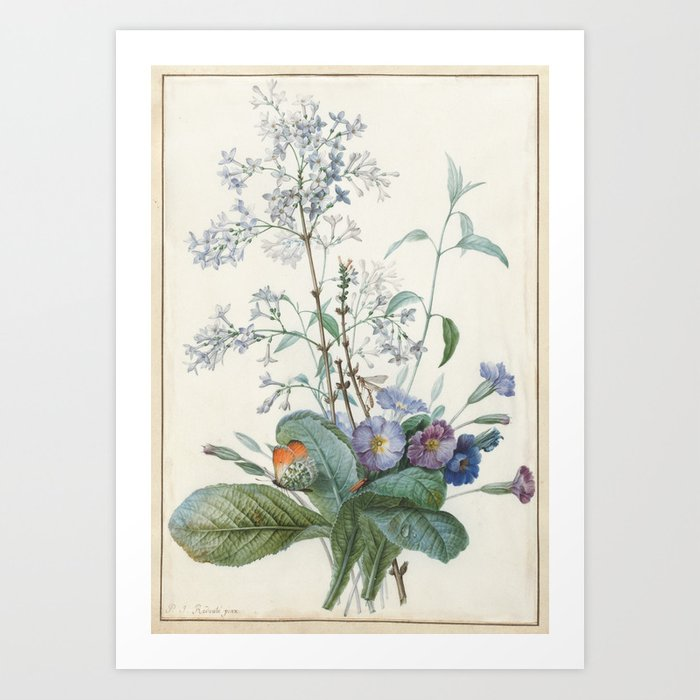 Vintage Botanical - A Bouquet of Flowers with Insects Art Print by  fineearthprints