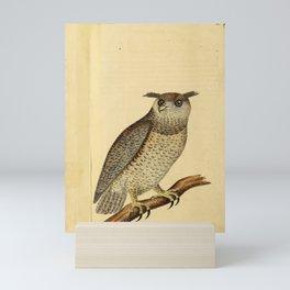 Indian Scops Owl10 Mini Art Print