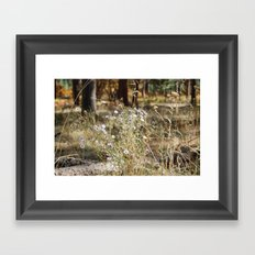 Fall Color with Flowers Framed Art Print