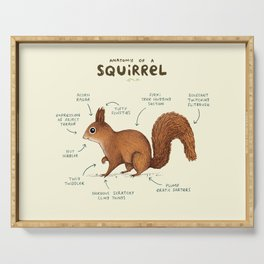 Anatomy of a Squirrel Serving Tray