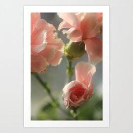 Spring flowers. Art Print