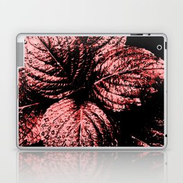 Glistening Garnet Laptop & iPad Skin