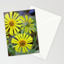 Showy Tarweed Stationery Cards