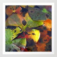 autumn lily pads IV Art Print