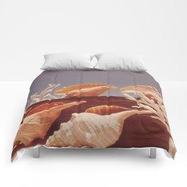 Souvenir Seashells Comforters