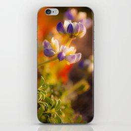 Calfornia Blooming iPhone Skin