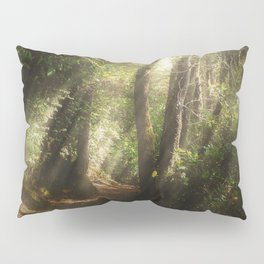 Lost In the Light Pillow Sham