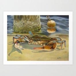 Crab On Shore Art Print
