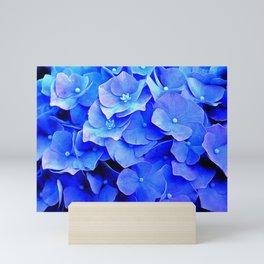 Hydrangea Blues Mini Art Print