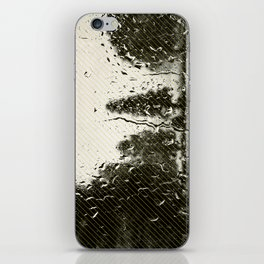 Cypress in the Rain iPhone Skin