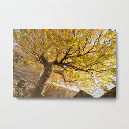 Protected and Protecting Metal Print