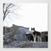 husky Canvas Prints featuring Husky by Mikey Tnasuttimonkol