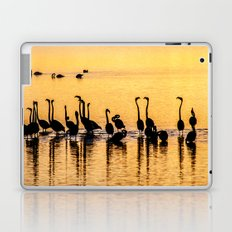 Silhouette of Pink Flamingos Laptop & iPad Skin