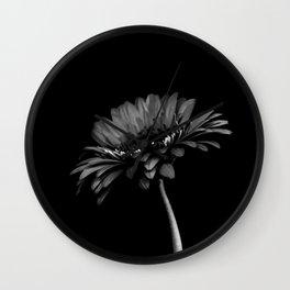 Daisy gerbera. Black and white Wall Clock